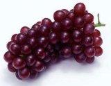 Extrato da pele da uva para Nutraceutical e alimento Supplment