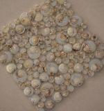 Bel de van uitstekende kwaliteit van de Rots van de Rivier om de Tegel van het Mozaïek van het Glas met Shell