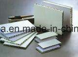 Les panneaux en aluminium ignifuges de nid d'abeilles pour le Cleanroom mure des partitions et Ceilins