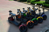 60V/12ah 리튬을%s 가진 2016 새로운 디자인 전기 자전거