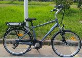 Heißes verkaufenleistungsfähiges elektrisches Fahrrad der stadt-2016 mit dem Pedal unterstützt