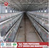 Cage automatique galvanisée à chaud de poulet pour les poulets à rôtir croissants et les couches (A3L90)