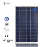 156mm * 156mm 265W China Poly Solar Painel PV Cell Module