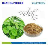 Uittreksel het van uitstekende kwaliteit van het Kruid van Icariin Epimedium voor de Gezondheid van Mensen