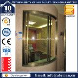 Ventana de desplazamiento vertical clásica de aluminio