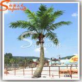 Искусственний дом и напольная цена по прейскуранту завода-изготовителя пальмы украшения