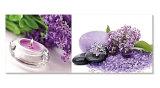 Material de construcción Purple Picture for Hoem Decoration