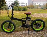 Bici elettrica pieghevole di nuovo disegno 2017 con la bicicletta della batteria di litio
