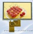 """5 """" LCD Bildschirmanzeige mit Bildschirm der hohen Helligkeits-TFT LCD"""