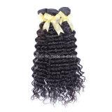 競争価格の良質のカンボジアの毛(FDX-YY-KBL)