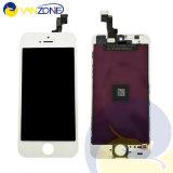 自由な出荷は工場6か月の保証の直接iPhone5 5s 5cのための等級AAA LCDのタッチ画面に値を付ける