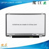 """15.6 """" 1366*768 B156xw04 V5 para a tela 15.6 do diodo emissor de luz do portátil"""
