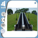 Escalera móvil de aluminio aprobada del paso de progresión de la velocidad 0.5m/S del Ce