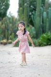 Vestidos do verão da roupa dos miúdos de Phoebee para meninas
