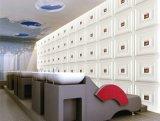 3D Comité van de Muur van Pu 1057-1 voor Bouwconstructie