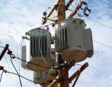 Одиночная фаза Поляк установила распределительный трансформатор