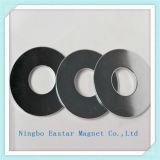 Ímã de anel permanente da alta qualidade do chapeamento do zinco