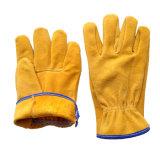 Couper les gants pilotants fonctionnants résistants pour des gestionnaires