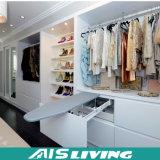 Caminhada Dampproof feita sob encomenda no Wardrobe do armário (AIS-W176)