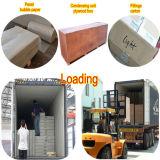 Kundenspezifischer Polyurethan-kalter Gefriermaschine-Raum mit Selbst-Closing Scharnier-Tür
