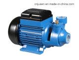 高品質220Wのプラスチック渦の水ポンプ