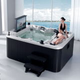 TVとの熱いTub Whirlpool SPA Bathtub、DVD、Cover、Step (M-3304)