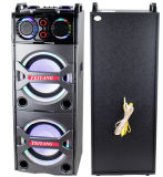 Doppeltes 10inch Bluetooth PA Loudspeaker Karaoke Entertainment System, Wireless Mic E246