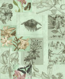 Animal와 Floral를 가진 새로운 Design Decorative Wall Paper