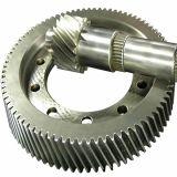 Zoll CNC, der Sts304L Sporn-Gang maschinell bearbeitet