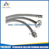 Braids를 가진 스테인리스 Steel Flexible Metal Hose