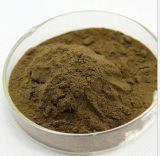 Estratto naturale puro di Codonopsis Pilosula di base di 100%