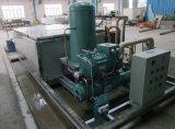 водяное охлаждение машины создателя льда блока льда 2000kg/Day коммерчески Saline