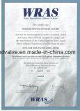 Soem Foot Valve mit Ce/Wras (ANSI/DIN/JIS/BS)