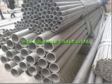 Edelstahl Pipe China-Factory Distributor Seamless Tube 304L