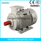 Motor eléctrico de la inducción Squirrel-Cage asíncrona trifásica de la CA de Ye3 132kw-6p para la bomba de agua, compresor de aire