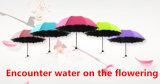 مجابه ماء على ال يزهر و [أوف-برووف] مظلة - [س002]