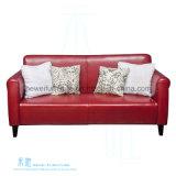 Sofà moderno del cuoio del salone impostato (HW-3613S)