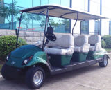 6 колесо Sleet Golf Cart с CE Approved