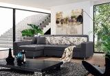 Soggiorno in tessuto Coner divano letto con bagagli (VV990)