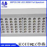 L'usine de DEL se développent légère pour 300W hydroponique le fini que blanc DEL se développent léger, l'éclairage LED 300W croissant pour la croissance de plantes