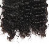深い波の人間の毛髪の拡張加工されていない卸し売りバージンのブラジル人の毛