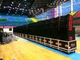 Potente Single 12inch Line Array Audio Profesional