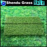 8800dtex人工的な草15750tuft密度との20mm