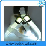 Chicote de fios recarregável do cão de animal de estimação do diodo emissor de luz dos acessórios do animal de estimação da fábrica
