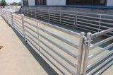 Новые сверхмощные 60 x 30 овальных панелей загородки овец рельсов для Австралии (XMM-SP1)