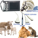 A exploração animal do ultra-som oferece um serviço móvel Ew-B10V da deteção da gravidez com o saco impermeável da ponta de prova Rectal, bateria de reposição prolongada