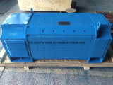 Motor uso intensivo industrial eléctrico DC