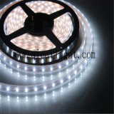 Tira flexível do diodo emissor de luz de Superbrightness 84LED/M 0.2W 2835 SMD