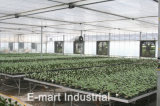 '' ventilatore di ventilazione assiale agricolo del sistema di raffreddamento 35