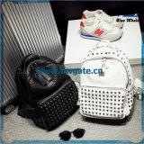 Il modo Bw1-078 ha reso personali i sacchetti stabiliti dello zaino dell'unità di elaborazione del sacchetto della spiaggia